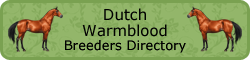 dutchwarmblood-button.png